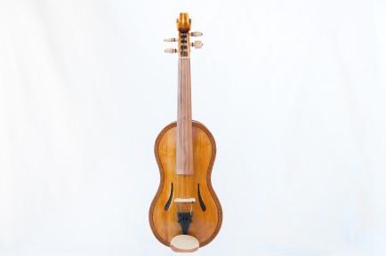 lupin fiol-1