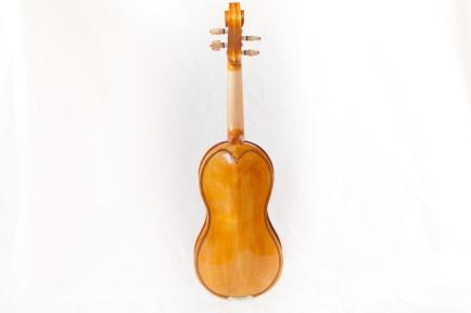 lupin fiol-9